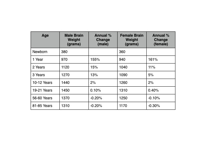 Brain weight by age and sex