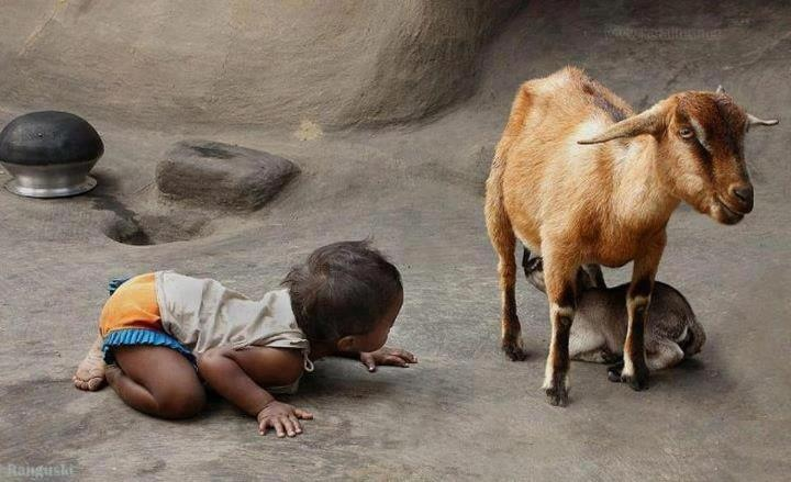 Observing and learning! Children learn from everything in their environment*Picture seen on Facebook