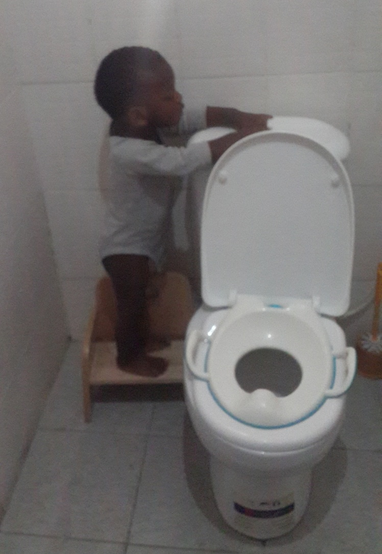 During a recent visit, my mum showed him how to carry over his chair, climb  it and flush the toilet. It's quite cute