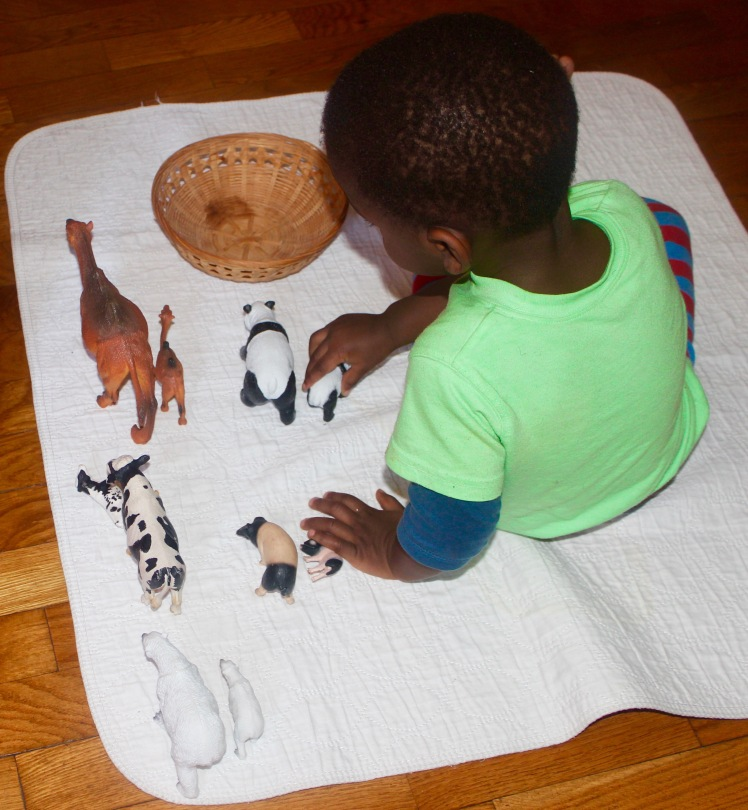 Another very loved matching activity. This is actually a mixture of Lakewood Learning and Shleich Animals. He enjoyed saying their names and lining them up in different ways. This continues to be a loved and very used material in our house.